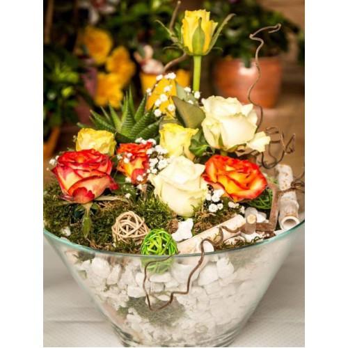 Aranjament plante naturale in bol de sticla