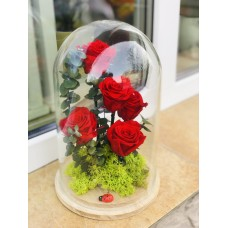 Trandafiri criogenati 5 fire
