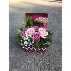 Cutie trandafiri cu verdeata